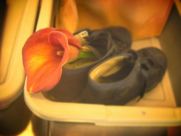 flower shoe